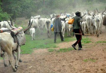 Fulani-herdsmen-360x250.jpg